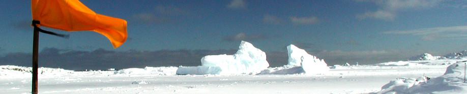 U.S. Antarctic Program - Media Inquiries Section