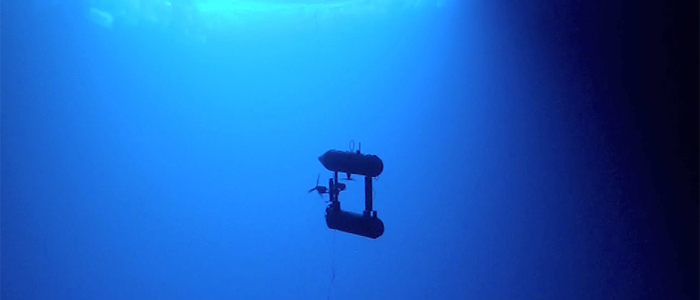 Unmanned Vehicle Provides First 3-D Images of Underside of Antarctic Sea Ice